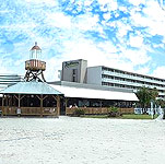The Radisson Bay Harbor Hotel - Tampa, Florida Hotel